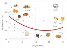Systematising satiety: How to optimise your diet to manage hunger – Optimising Nutrition High Fat Foods, Low Fat Diets, No Carb Diets, How To Get Abs, How To Eat Less, Insulin Index, High Sugar Fruits, Starch Foods, Whole Food Diet