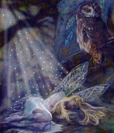 A young fairy woman rests in the secret shadows under the guarded vigil of a cautious owl.