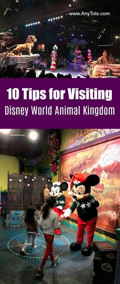 Top 10 Tips for Visiting Disney World Animal Kingdom in Orlando Florida. Learn more about Disney World Animal Kingdom Fastpass Tips, Disney World Food, Animal Kingdom Rides, Pandora The World of Avatar, Animal Kingdom Safari, Fun Things to do at Animal Kingdom and more. www.AnyTots.com #DisneyWorld #AnimalKingdom #Travel #FamilyTravel