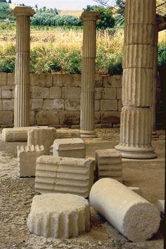 Museo archeologico del Santuario Ellenistico di Cuma e Parco Archeologico a Fermo