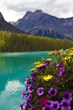 touchdisky:   Emerald Lake, British Columbia, Canada byAngeStar
