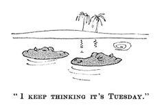 """""""I keep thinking it's Tuesday"""""""