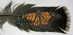 Hand painted monarch butterfly on a wild turkey feather, in a 10x 8 oak frame.