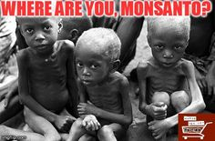 @jonathanpatz @RodaleInstitute Millions of children #staving NOW. Monsanto claims wants to help, but instead steals land belonged to families for generations to grow #GMO seed or have them just eat GMO rice/bananas not variety of vegetables. USA has put more carbon in the air than any country on the planet. Result is people starve in other parts of world so Monsanto has forced us to participate in the business of creating starvation. Buy organic.