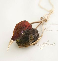 Victorian Taxidermy Hummingbird Necklace // click through to link for an interesting history on the piece