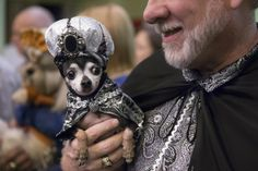 Everyone is royalty and should be treated as such. | 35 Things We Learned At New York's Hottest Dog Fashion Show
