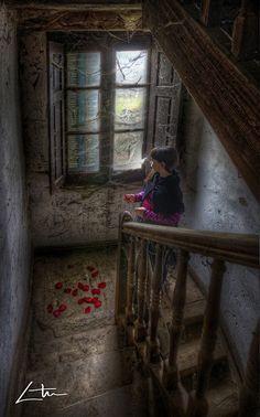 A Rose for You - Aitor Arana (Print)