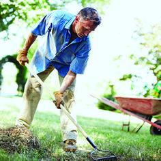 Autumn Lawncare | Garden Club Fall Lawn Care, Zoysia Grass, Garden Club, The Great Outdoors, Outdoor Power Equipment, Autumn, Gardening, Flowers, Modern