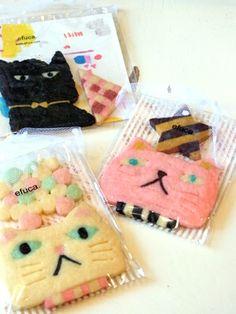 cat refrigerator cookies