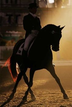 Dating back more than two thousand years, the object of dressage is the harmonious development of the physical ability of the horse. Horsemanship, if you will. Aesthetically beautiful to the observer, the horse submits happily and proudly to the will of the rider.