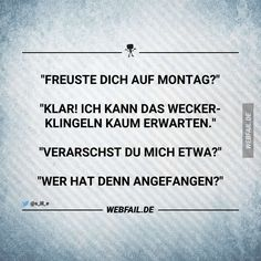 Die dümmste Frage | Webfail - Fail Bilder und Fail Videos Spirit Quotes, Wise Quotes, Funny Quotes, The Words, Word Pictures, Funny Pictures, Weekday Quotes, German Quotes, Good Jokes