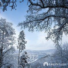 #winterwonderland #linz bei -9 grad  . . . . #winter #schnee #landscape #citylife #igerslinz #linzpictures #linzer #upperaustria #oberösterreich #snow #view #sky #fromwhereistand #igersaustria #mountain #alps #downtown #city #discover #berge #nature #wanderlust #hike #riverdanube