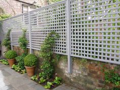 Creative Uses for Garden Trellises