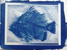 PrintJam Cyanotypie: Blauwer dan blauw!