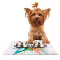 Kess InHouse Mareike Boehmer 'Colorful' Rainbow Abstract Feeding Mat for Pet Bowl, 24 by 15-Inch >>> Continue to the product at the image link. (This is an affiliate link and I receive a commission for the sales) #MyCat