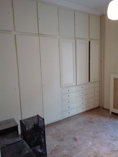 complete apartment painting, closet, furniture and libraries, floor polishing and door and window dyeing