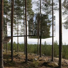 Tham & Videgård Arkitekter - Microcube Tree Hotel