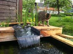 Pergola over the pond to deter herons and add a bit of for Wooden pond waterfalls