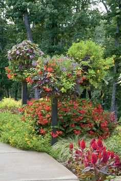 Flowers don't have to grow at ground level. Get face-to-face with your containers by literally putting them up on a pedestal! These columned containers consist of coco-fiber baskets atop steel posts.