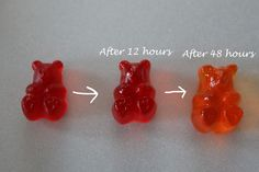 Apparently, There are quite a few ways to get a gummi bear drunk. Drunken Gummies (or Vodka Infused  Gelatin Omnivores to you Foodies) are a really fun party treat and a great alternative to jello ...
