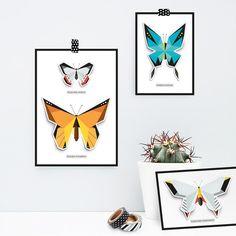 Vlinderkast PopUp kaartenset  vlinder kast lijst door OrigamiZoo