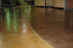 Grinded, Polished, Stained, and sealed concrete Hardwood Floors, Flooring, Evolution, Concrete, Construction, Fitness, Wood Floor Tiles, Building, Gymnastics