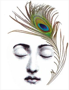 Feather Head by Zlatka Paneva (Canvas)