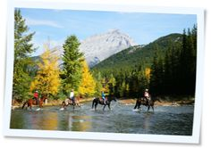 "Banff trail ride...three crossings.  Most fun ever...waist deep in water.  Mommy's horse is always the ""glue factory"" horse.  Obstinate and refused to cross.  Tee Hee."