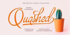 Breakfast Script - Webfont & Desktop font « MyFonts