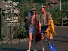M*A*S*H: Season 3, Episode 17 The Consultant (21 Jan. 1975) mash, 4077, Hawkeye Pierce , Captain Benjamin Franklin Pierce, Alan Alda, Trapper John McIntyre, Wayne Rogers