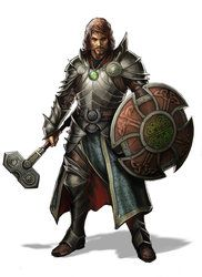 Cleric, paladin, human, warhammer, shield, beard