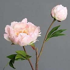 Bujori artificiali crem-roz - 47 cm
