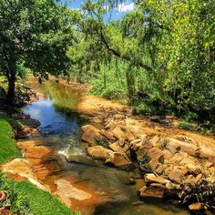 http://lakife.com #southafrica #travelblog #travelblogger #traveladdict #travel #blogger #lakife.com #globetrotter #travelinspiration #traveltheworld #traveling #instatravel #johannesburg #joburg #river #nature #landscape #sun #ilovemyfollowers