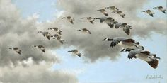 """""""FLOATING DOWN"""" 12 X 24 -BIRDS OF ALL KINDS"""