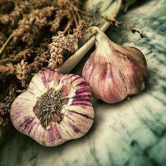Garlic - Food Photo - Garlic Photo - Still Life Photo - Kitchen Photography - Square - Digital Photo - Etsy - Natural Detox, Natural Cures, Natural Healing, Natural Beauty, Remove Skin Tags Naturally, Restaurant Hamburg, Combattre La Cellulite, Skin Tags Home Remedies, Digital Foto