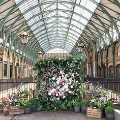 A glimpse of London's #coventgardeninbloom, happening alongside #belgraviainbloom & #chelseainbloom this week. We love this natural #floralwall! #repost @prettycitylondon