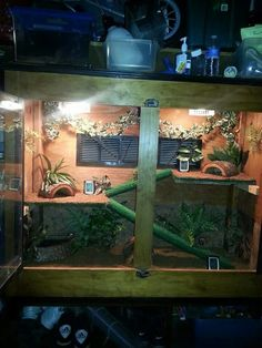 Hermit Crab tank with a front opening and two stories. OMG I love it