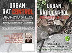 Rat control Bristol with local pest specialist Simon Berenyi at WaspKill UK - get rid of rat problems faster and permanently today! Get Rid Of Squirrels, Rat Infestation, Getting Rid Of Rats, Brown Rat, Rat Control, Rat Look, Secrets And Lies, Pest Control Services