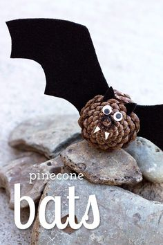 Halloween Basteln: Süße DIY Fledermaus aus Tannenzapfen und Papier Black felt, pinecones, and wiggly eyes are all kids need to create a small colony of creepy-cute Pinecone Bats! Perfect for Halloween. Diy Y Manualidades, Manualidades Halloween, Vbs Crafts, Nature Crafts, Beach Crafts, Yarn Crafts, Sewing Crafts, Paper Crafts, Scary Halloween Crafts