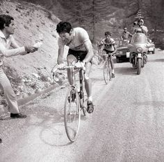 """Giro d'Italia 1972. 14^Tappa, 4 giugno. Savona > Bardonecchia Jafferau. Eddy Merckx (1945) e Josè Manuel Fuente (1945-1996). Impresa memorabile di Merckx che sull'inedita ascesa finale dello Jafferau riprende e stacca """"El Tarangu"""" a 1 km dalla vetta, infliggendogli 47"""" di distacco. Fuente si era lanciato generosamente all'attacco con Francisco Galdos (1947) sulla penultima salita del Sestriere, ma, complice anche il vento contrario del fondovalle, si ritrovò senza forze in vista del… Velo Vintage, Vintage Cycles, Thing 1, Bike, Classic, Sports, Inspiration, Road Cycling, Road Bike"""
