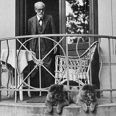 Psychoanalyst Sigmund Freud at home with his Chow-Chows on his birthday. Vienna Austria May 8 Charles Darwin, Famous Dogs, Famous People, Famous Men, Vintage Dog, Salvador Dali, Chow Chow, Dog Photos, Mans Best Friend