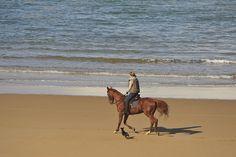 Cantabria a caballo