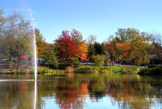 Columbus Zoo - Dublin, Ohio. Photo by Jordan Geyer #ohio #columbus