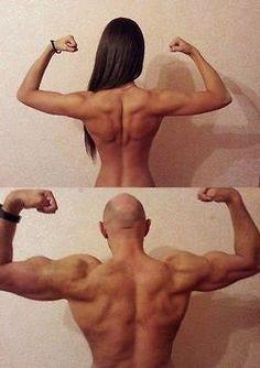 Actually bigger upper body makes your waist smaller!