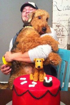 Its My Birthday Party Amp Im Scared Of Cake Airedale Terrier