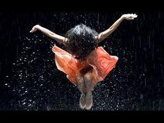 Pina, film de 2011 de Wim Wenders portant sur le travail de la célèbre chorégraphe Pina Bausch.