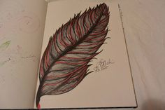 Red feather 2015  Lisa M