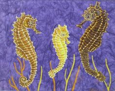 seahorse pictures | Jackie's pictures Reptilian Rainbow and Seahorses reproduced with ...