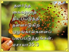 97 Latest New Tamil Jesus Bible Quotations Bestbibleverse Com 77