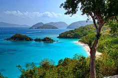 Trunk Bay, St. John Island, US Virgin Islands